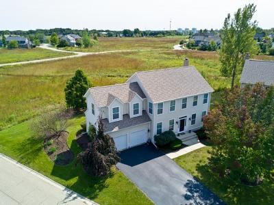 Grayslake Single Family Home For Sale: 1463 Sunflower Court