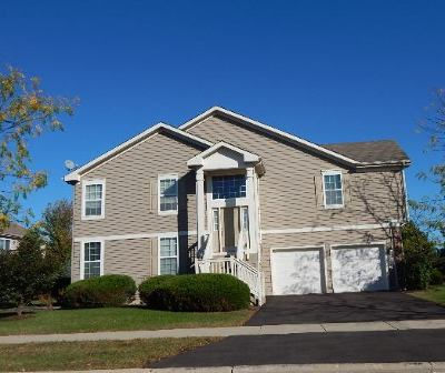 Bartlett Condo/Townhouse For Sale: 107 Fountain Grass Circle