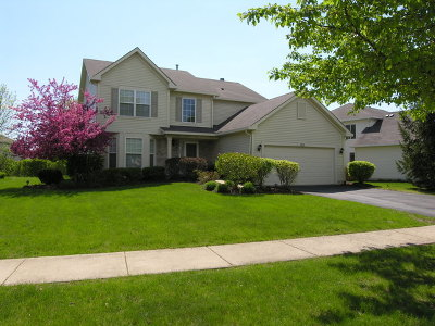 Bolingbrook Single Family Home For Sale: 182 Christine Way