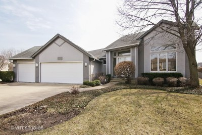 Buffalo Grove Single Family Home For Sale: 415 Marvins Way
