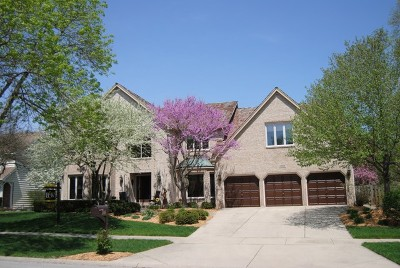 Naperville Single Family Home For Sale: 1005 Sheppey Court