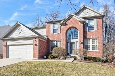 Streamwood Single Family Home For Sale: 7 Sequoia Court