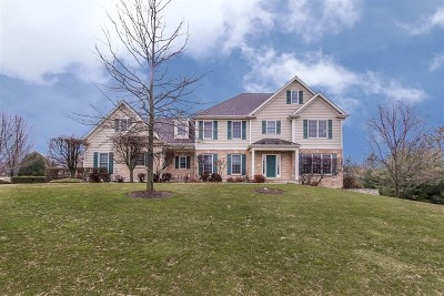 St. Charles Single Family Home For Sale: 39w480 Abbey Glen Court