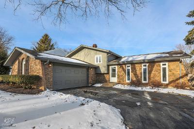 Naperville Single Family Home For Sale: 49 Redstart Road