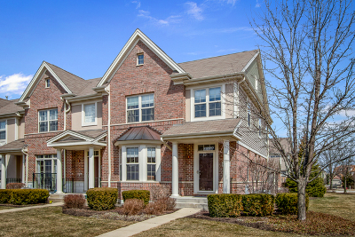 Buffalo Grove Condo/Townhouse For Sale: 2502 Waterbury Lane