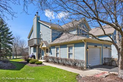 Naperville Condo/Townhouse New: 1288 Tennyson Lane #201