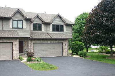 Hampshire Condo/Townhouse For Sale: 814 Casey Lane #814