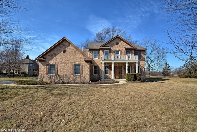 Lakewood Single Family Home For Sale: 7425 Farrell Drive