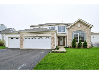 Bolingbrook Single Family Home For Sale: 1540 Schumacher Drive