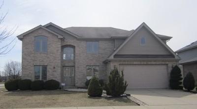 Matteson Single Family Home For Sale: 6101 Newbury Lane