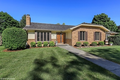 Libertyville Single Family Home For Sale: 1164 Furlong Drive