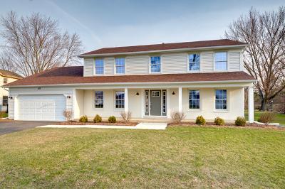 Naperville Single Family Home For Sale: 631 Fredericksburg Court