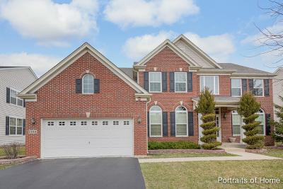 Hoffman Estates Single Family Home For Sale: 2184 Amelia Lane