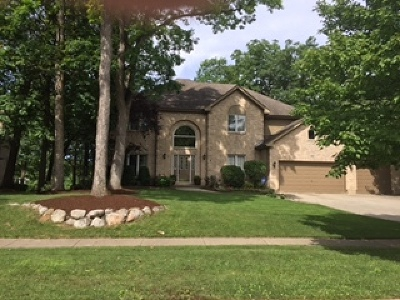 Bartlett IL Single Family Home For Sale: $499,500