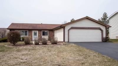 Hanover Park Single Family Home For Sale: 4520 Zeppelin Drive