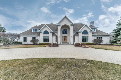 Frankfort Single Family Home For Sale: 9304 West Golfview Drive