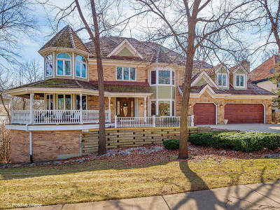 Burr Ridge Single Family Home For Sale: 140 Circle Ridge Drive