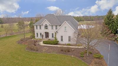 St. Charles Single Family Home For Sale: 7n399 Homeward Glen Drive