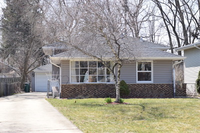 Wheaton Single Family Home For Sale: 26w135 Mayflower Place