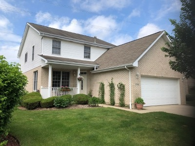 Orland Park Single Family Home For Sale: 17512 Brook Crossing Drive