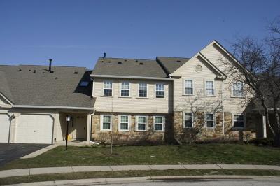 Schaumburg Condo/Townhouse For Sale: 2326 Knollwood Court #X2
