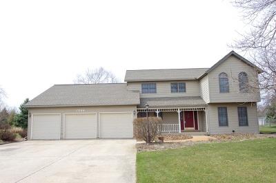 Plainfield Single Family Home For Sale: 13144 Vicky Street