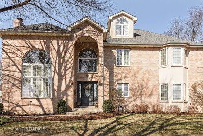 Arlington Heights Single Family Home For Sale: 814 North Dryden Avenue