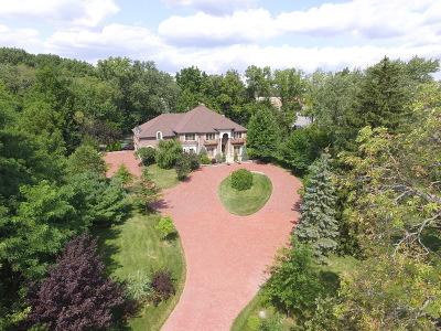 Lemont Single Family Home For Sale: 15875 135th Street