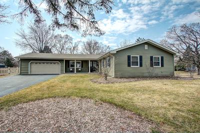 Libertyville Single Family Home For Sale: 734 Paradise Lane