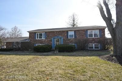 Barrington  Single Family Home For Sale: 909 Dundee Avenue