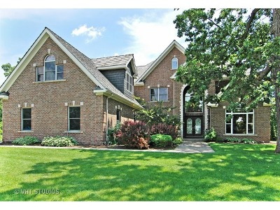 McHenry Single Family Home For Sale: 1802 Black Oak Drive