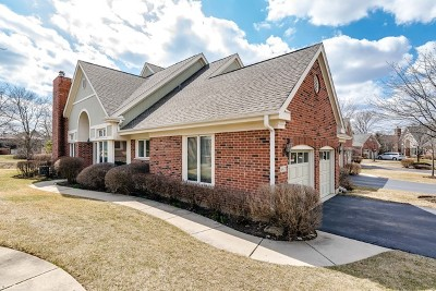 Northbrook Condo/Townhouse For Sale: 4433 Four Winds Lane