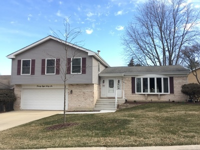 Lisle Single Family Home For Sale: 2866 Saint Anton Court