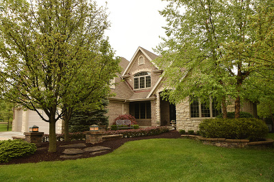 Orland Park Single Family Home For Sale: 17243 Buck Drive