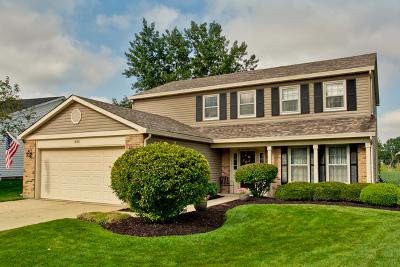 Hoffman Estates Single Family Home New: 633 Wainsford Drive