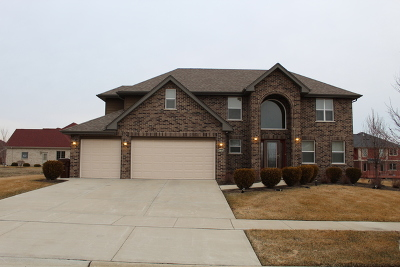 Olympia Fields Single Family Home For Sale: 3105 Hermes Drive