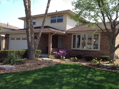 Tinley Park Single Family Home For Sale: 8707 Carriage Lane