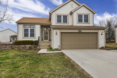 Crystal Lake Single Family Home For Sale: 1064 Whitehall Way