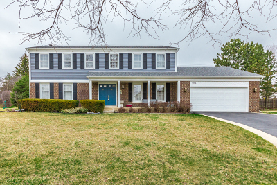 Hoffman Estates Single Family Home New: 5184 Tamarack Court