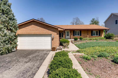 Downers Grove Single Family Home For Sale: 3811 Venard Road