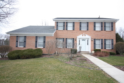 Orland Park Single Family Home For Sale: 16617 Grant Avenue
