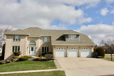 Orland Park Single Family Home For Sale: 8200 138th Place