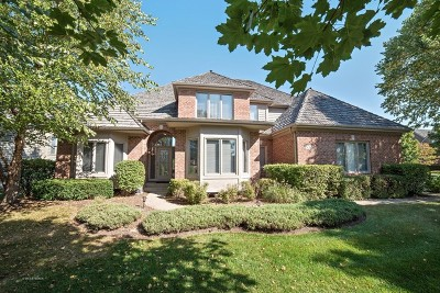 South Elgin Single Family Home For Sale: 532 Waters Edge Drive