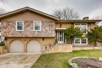 Schaumburg Single Family Home For Sale: 606 Bahama Court