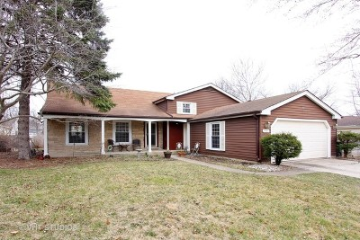 Libertyville Single Family Home For Sale: 1150 Weeping Willow Lane