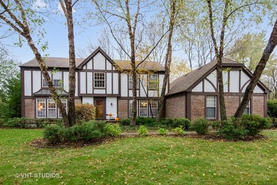 Lakewood Single Family Home For Sale: 9918 Scots Circle