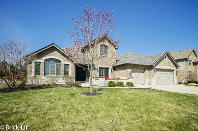 Mokena Single Family Home Contingent: 21340 Foxtail Drive