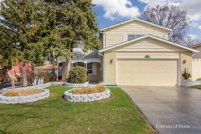 Elmhurst Single Family Home New: 361 East Yorkfield Avenue