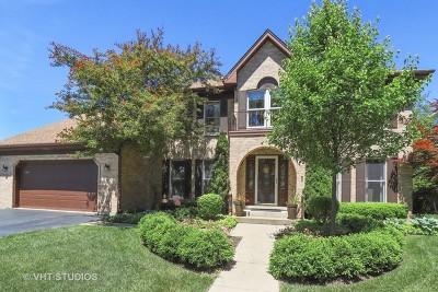 Grayslake Single Family Home For Sale: 462 Jennifer Lane