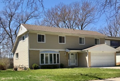 Mount Prospect Single Family Home For Sale: 917 North Quince Lane